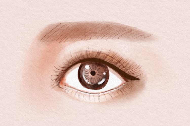 【動物顔診断】たぬき顔女子の特徴は?顔&性格の特徴とたぬき顔になるメイクを紹介! 3番目の画像