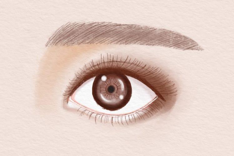 【動物顔診断】うさぎ顔女子の特徴は?顔&性格の特徴とうさぎ顔になるメイクを紹介! 3番目の画像