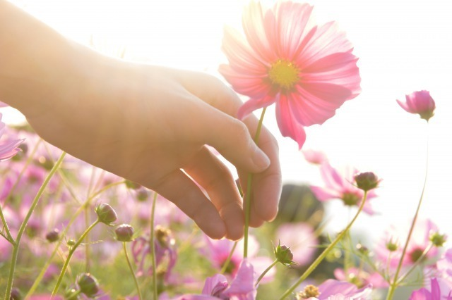 執着を手放すと幸せになれる。過去の恋を断舎離して前を向く方法 1番目の画像